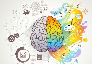 Konzept dargestellt als linke und rechte Gehirnhälfte, wobei die rechte bunt ist