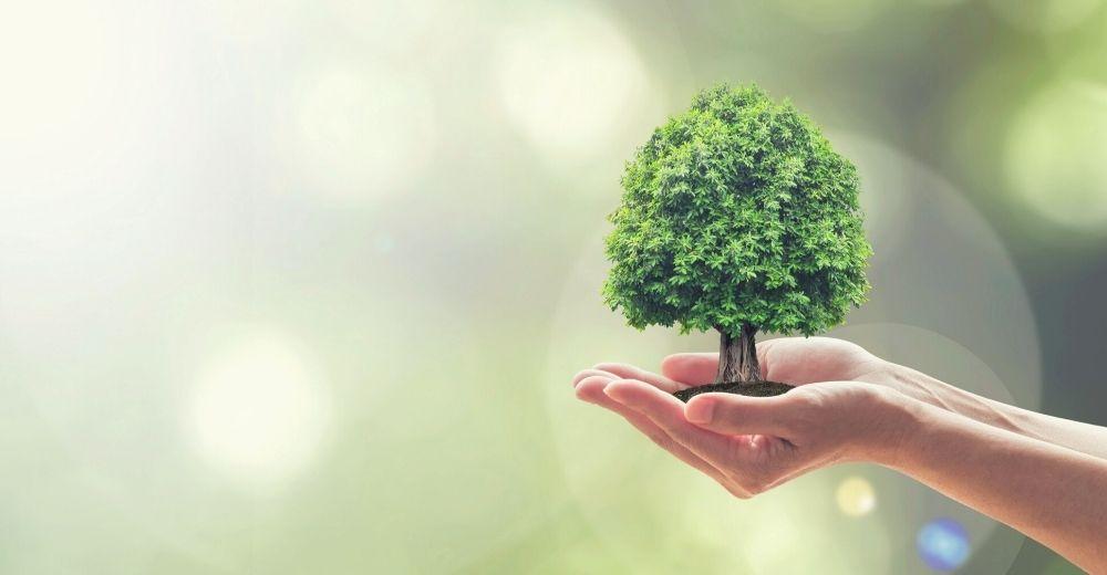 Blogbeitrag Nachhaltigkeit bei Select